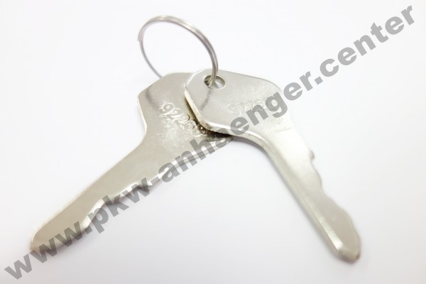 1Paar Ersatzschlüssel für Türschloß (altes Modell) Cheval Liberte